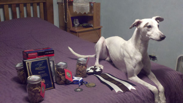 Chili with all his loot from the Remembering Finnegan meet he took 2nd place in